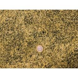 Tissu  Quilter Treasure OPEN AIR  Grass Gazon