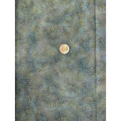 Tissu japonais kaufmann Leonard de Vinci toile peinte